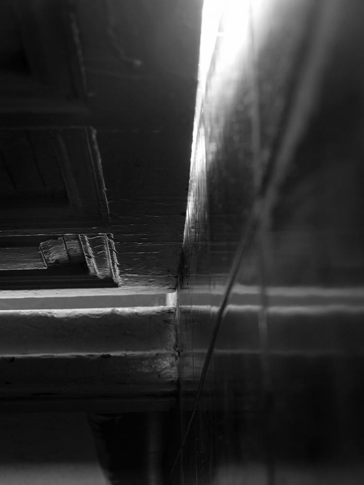 Proyecto Foto en La Ampliadora